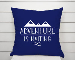 adventureiswaitingpillow