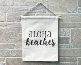 alohabeachesbanner