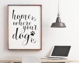 homeiswhereyourdogisprint