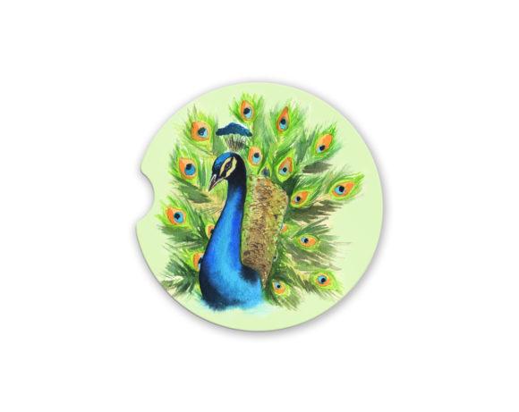 peacockcoaster