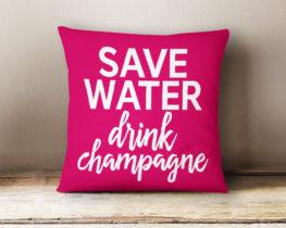 savewaterdrinkchampagnepillow