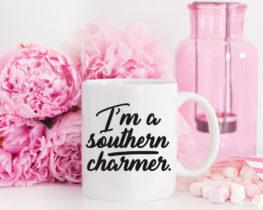 southerncharmermug